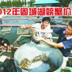 2012年高淳螃蟹行情